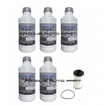 6-Speed DSG Auto Filter Kit With ATF Fluid Volkswagen Golf MK6 Audi TT