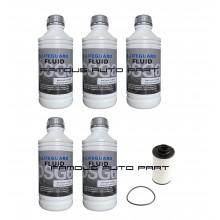 6-Speed DSG Auto Filter Kit With ATF Fluid Volkswagen Golf MK6 Audi TT